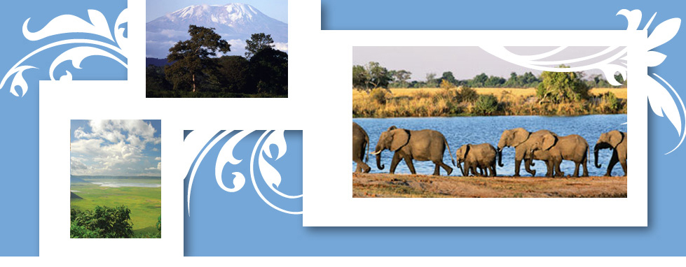 Africa Escorted Tours