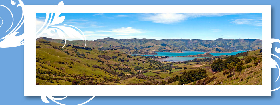 Globus® New Zealand Tours