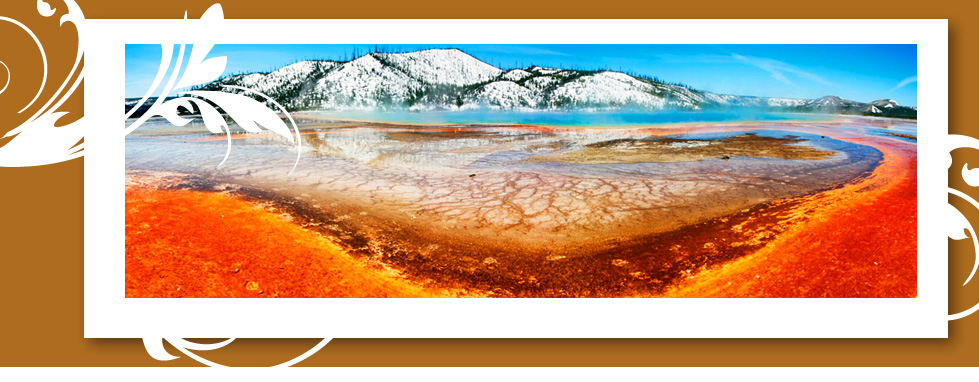 Globus® Yellowstone National Park Tours