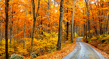 New England Tour and Fall Foliage Vacation